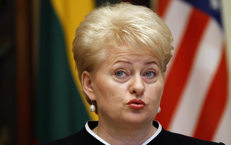 Литва хочет стать ведущим военным поставщиком для армии США