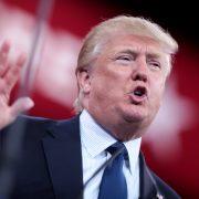 redukcji Gwardii narodowej Donald Trump odwiedzi Francję stal