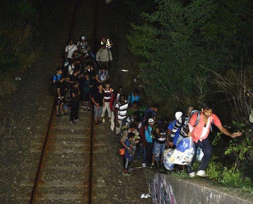 Niemcy spodziewają się wzrostu liczby nielegalnych imigrantów