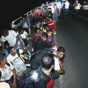 Niemcy: blisko polskiej granicy zatrzymano ciężarówkę z 51 imigrantami przestępczości