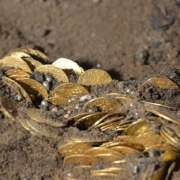 W bydgoskiej katedrze odkryto skarb złotych monet [+FOTO]
