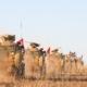 Wojska tureckie w Syrii, wikipedia